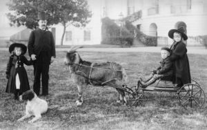Photo of Baby McKee being pulled in a cart by the Harrison's family pet goat, old whiskers. Two other children, a dog, and president harrison stand nearby and pose for the photo.
